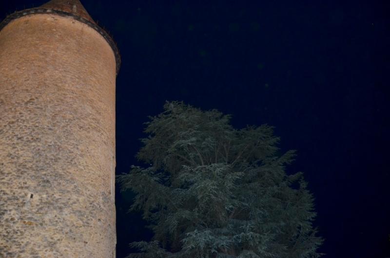 3) La Basilica del Sacro Cuore (13) (FILEminimizer)