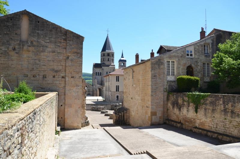 7) Abbazia di Cluny (28) (FILEminimizer)